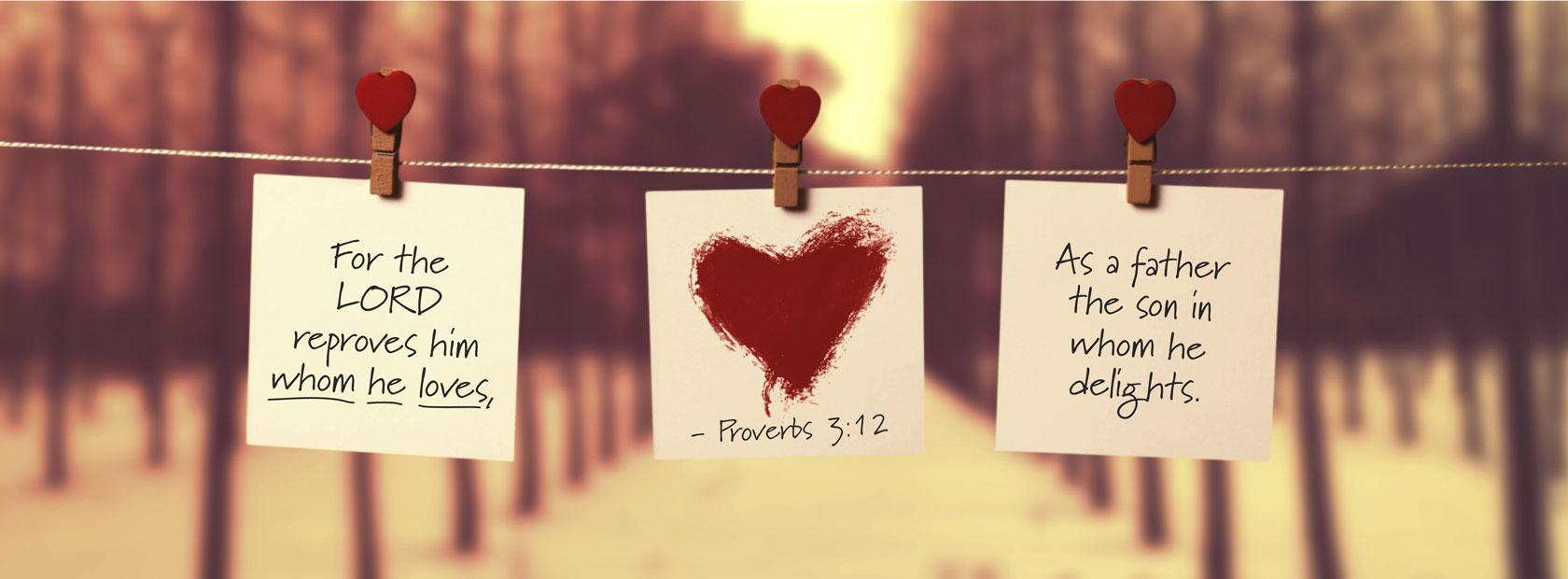 Proverbs 3:12